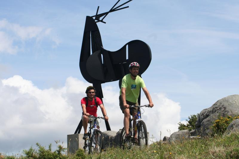 Mountain biking in the mountains, deer sculpture of José Rodrigues