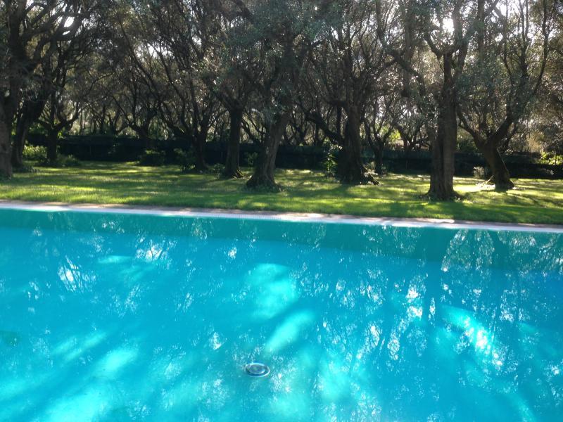 Swimming Pool 6 X 13