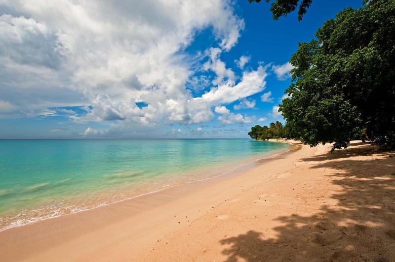 Jessamine - Gibbes Beach.jpg