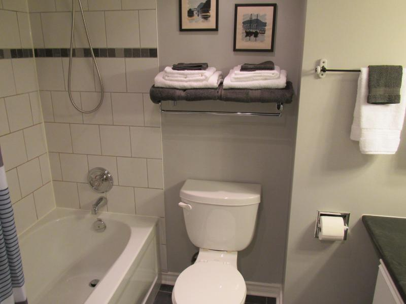 Washroom has shower and relaxing soaker tub