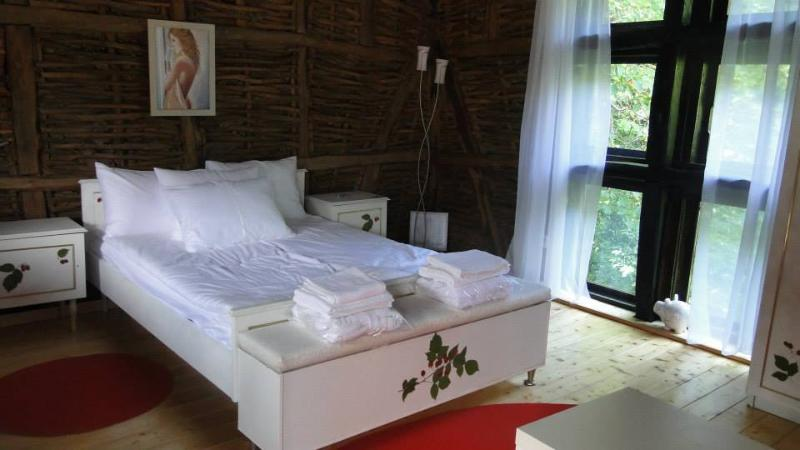 The Raspberry Apartment, holiday rental in Lovech Province