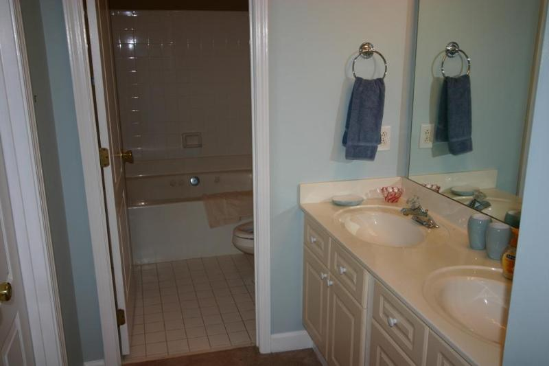 Master Bath with spa tub and large walk in closet.