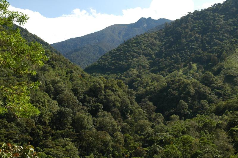 Looking toward Mt. Chirripo