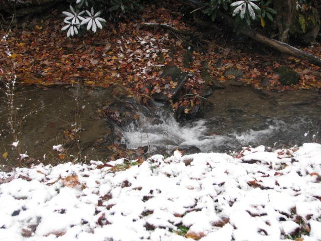 Snow covered leaves around the waterfall in the creek. Oct. 2014