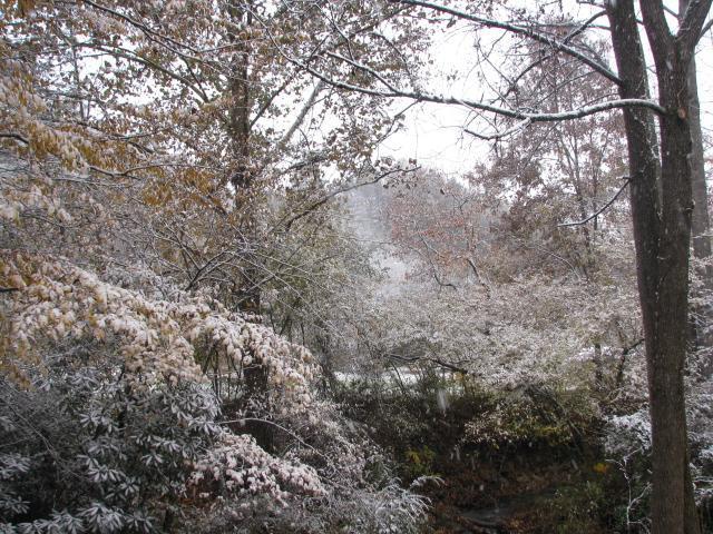 Winter wonderland in the backyard 2014
