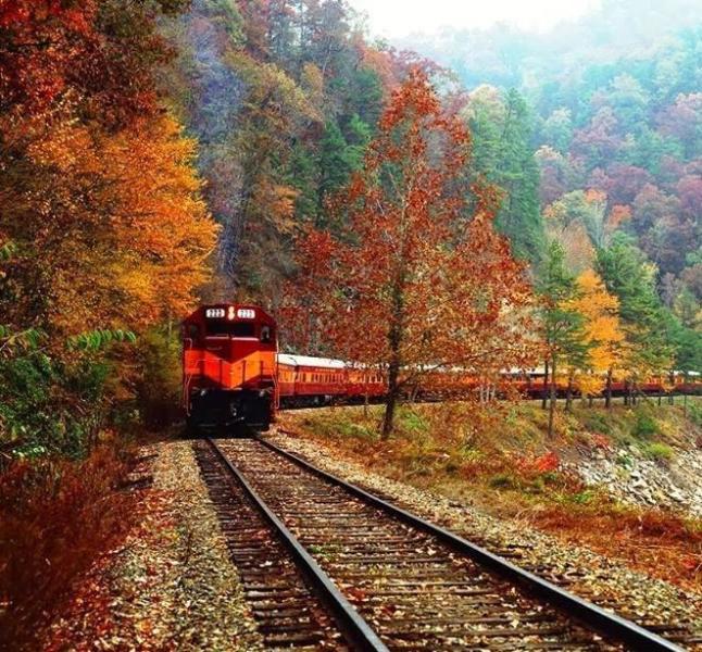 Fall train ride on The Great Smoky  Mountain Railroad