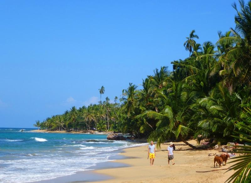 Beautiful beaches are minutes from Geckoes Lodge.