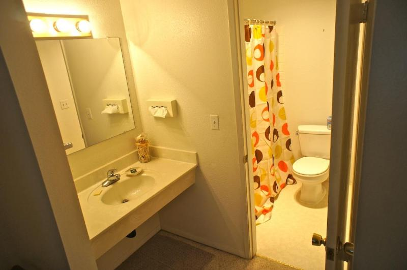 The second bathroom in the back bedroom