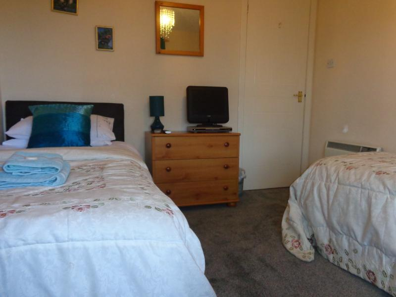 The 'teal' Twin room with TV and DVD player