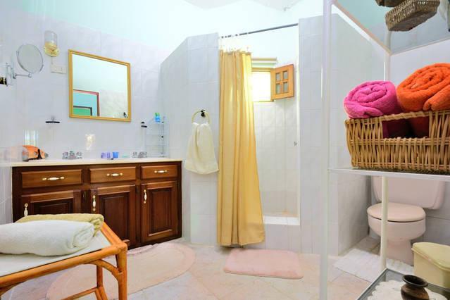 Master Bathroom: double sink, mirror, toilet, shower with non slip tiles, hair blower