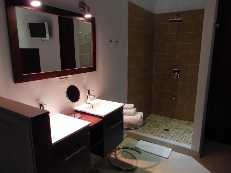 Bedroom 4 en-suite bath (New!)