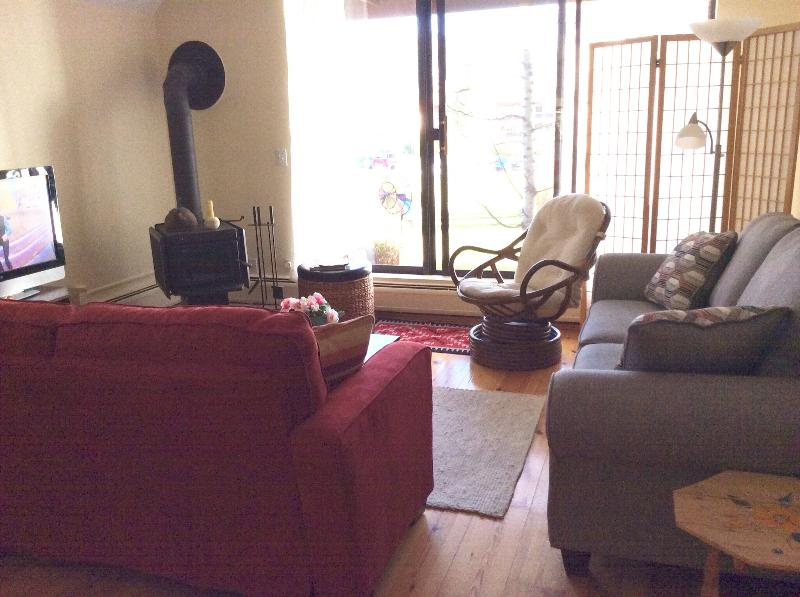 Living area with patio, Mt views and woodturning stove