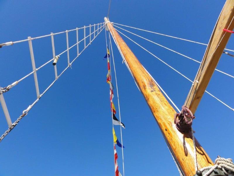 Masts (no sails unfortunately)