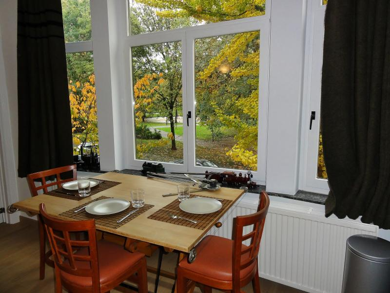 Dinning table + View