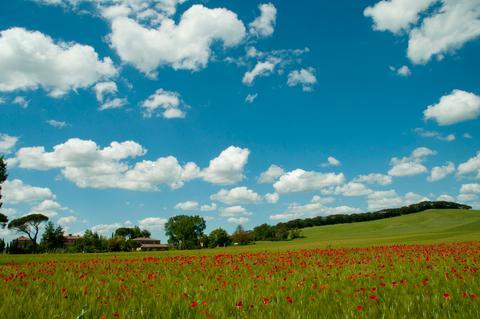 the fields around it