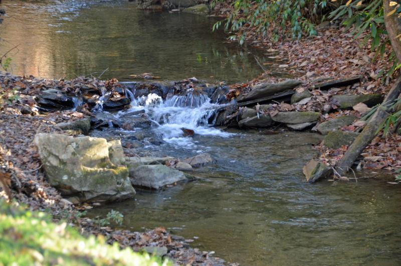 My guests just can't get enough of the creek!!