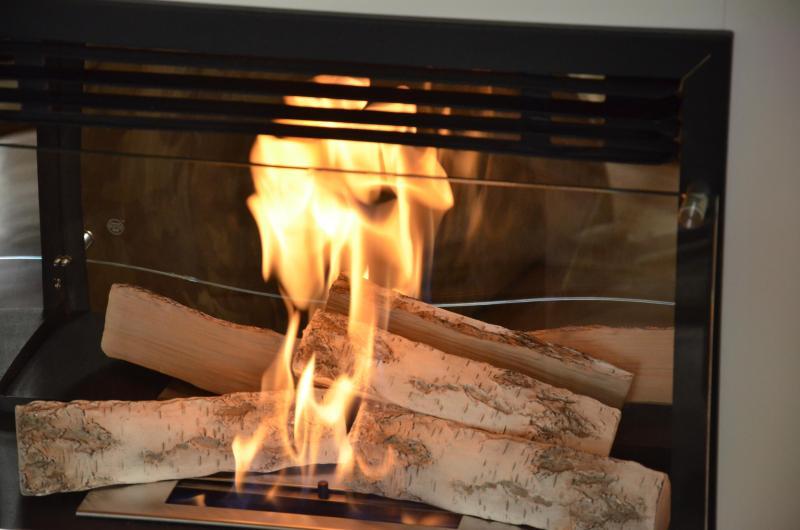 Bio-ethanol fireplace-- real flames, but no smoke :)