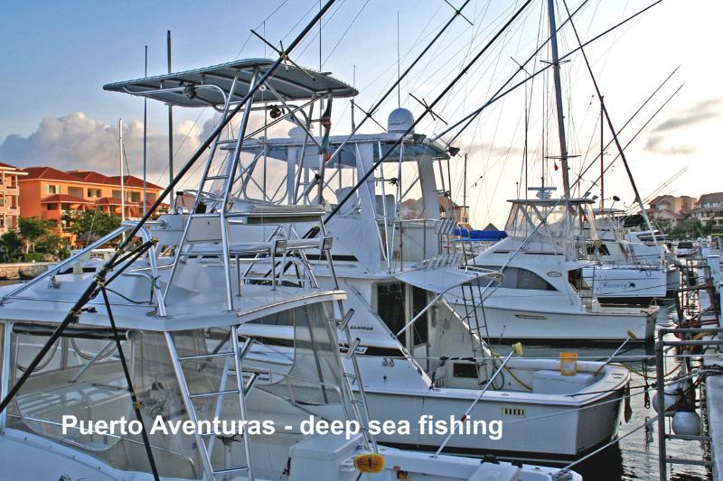 Puerto Aventuras Deep Sea Fishing