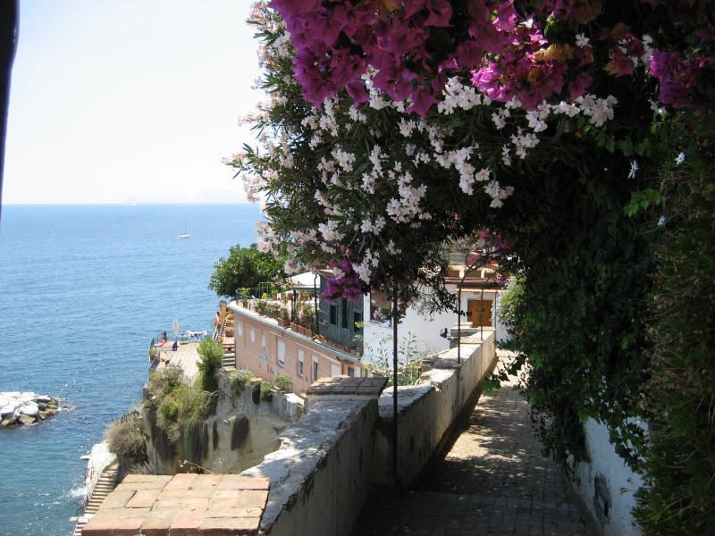 Una casa da sogno abbracciata al mare di Posillipo, vacation rental in Panza