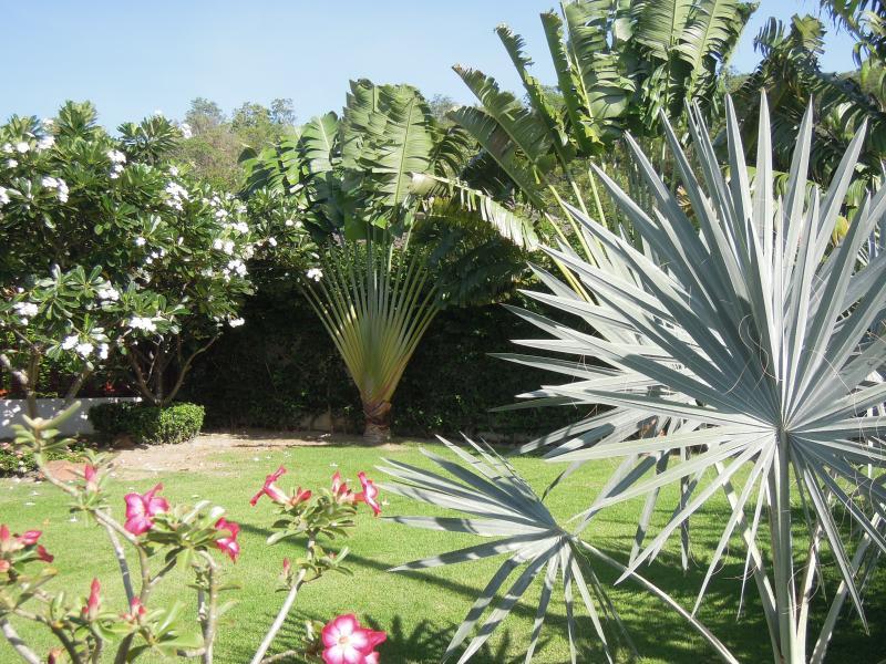 Jardim 400 M2