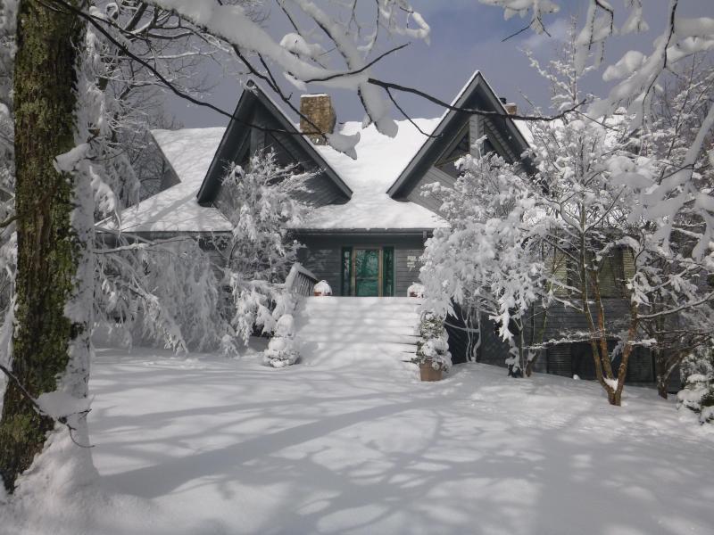 Amazing Winter house!