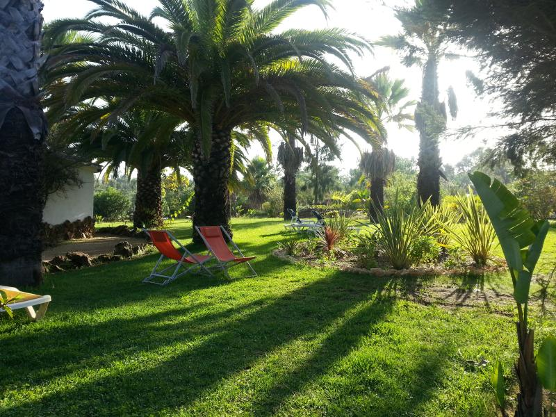 Quinta do Paraiso, Casa Botanica, vacation rental in Beja District