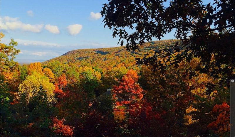 Autumn Foliage, The views are beautiful all year round