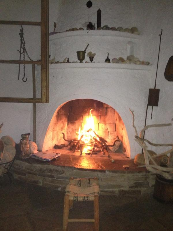 Island style fireplace, wood available