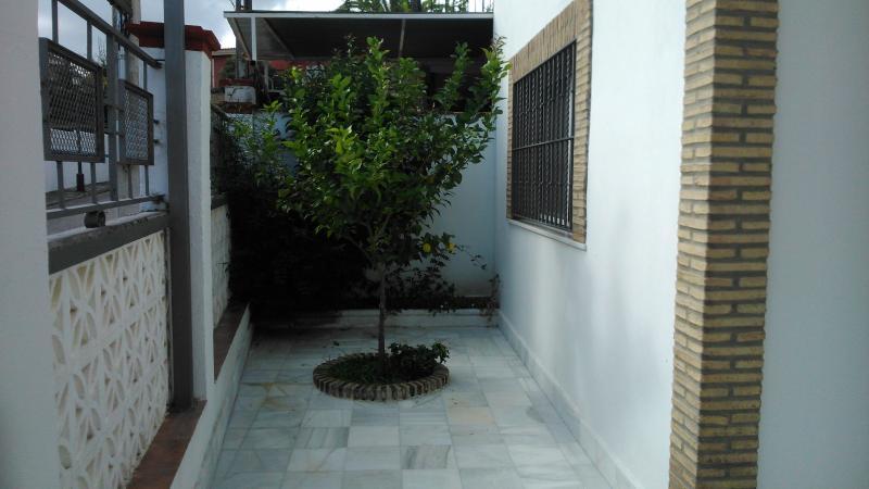 Green area with lemon and Jasmine