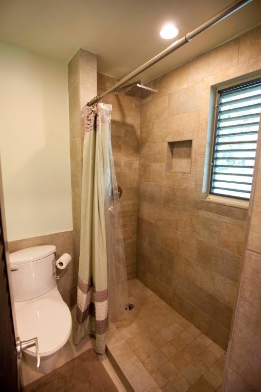 Spa style shower, master bath