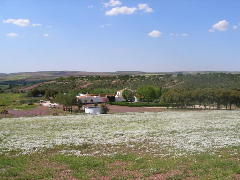 Bonita Casa de Campo en plena Ruta del Quijote, casa vacanza a Argamasilla de Alba