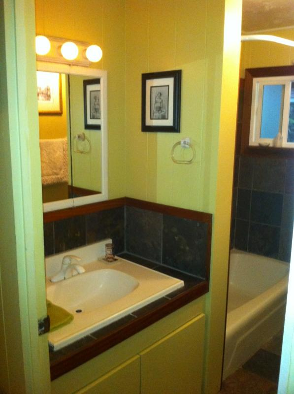 Bath features slate tile and tub and shower