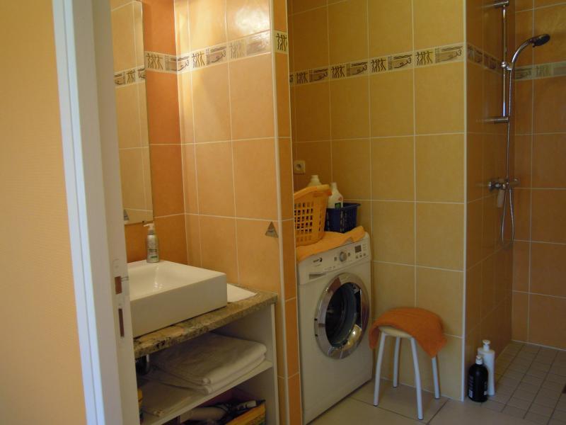 salle d'eau chambre 1 - douche à l'italienne