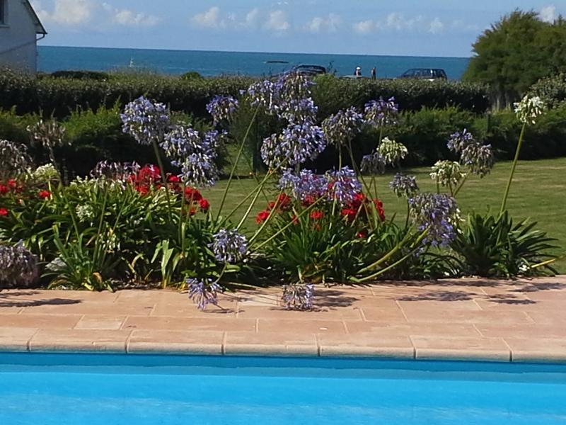 vue de la piscine, le jardin et la mer