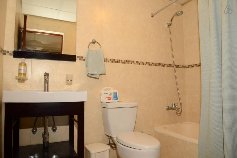 Master Bathroom - Apt. 1