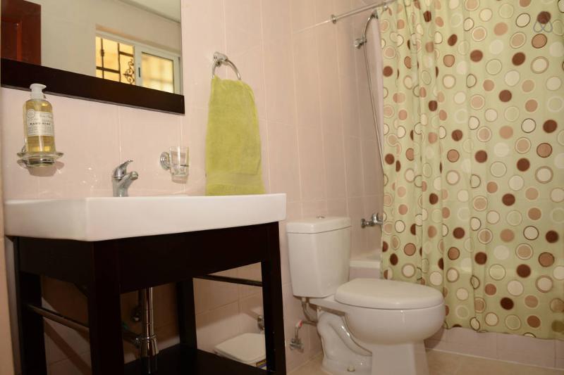 3rd Bathroom - Apt. 1