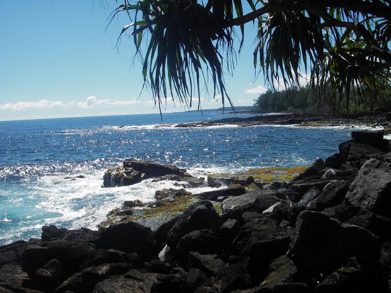 Scenic Puna shoreline