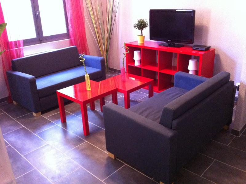 LE LOGIS LE PIC DU MIDI, vacation rental in Bartres