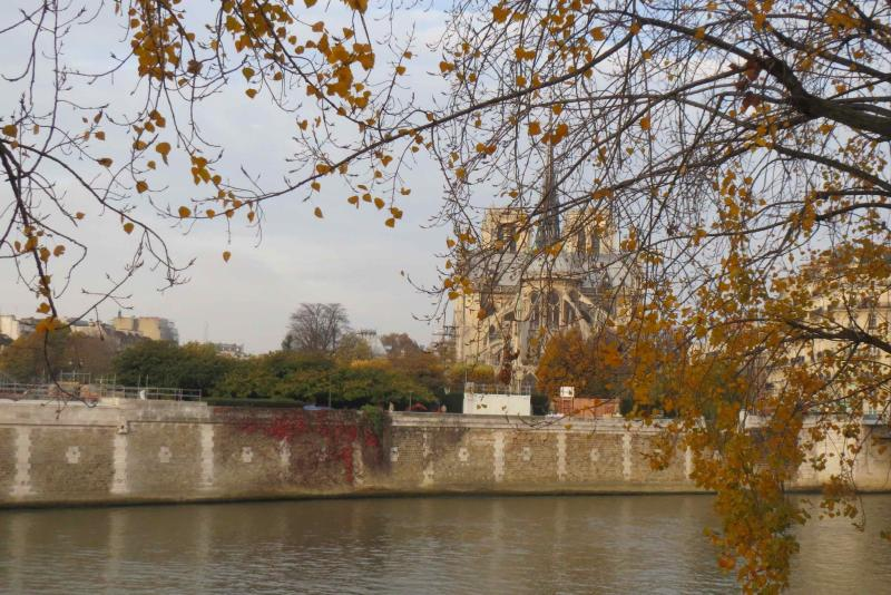 Notre Dame cathedral, view autumnal from the Ile St Louis
