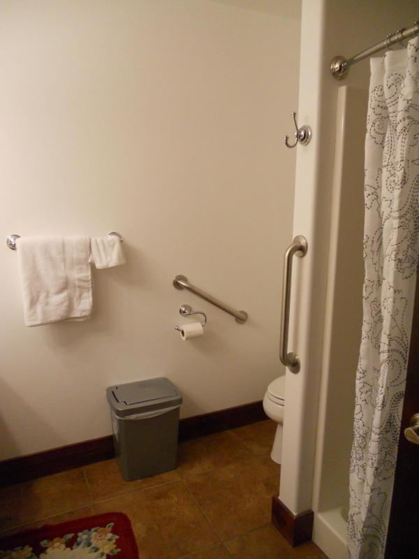 Main floor bath. Vanity and linen closet to left in picture.