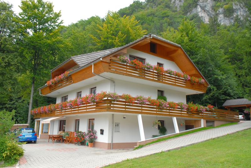 Our apartment is located in a peaceful area with beautiful nature all around