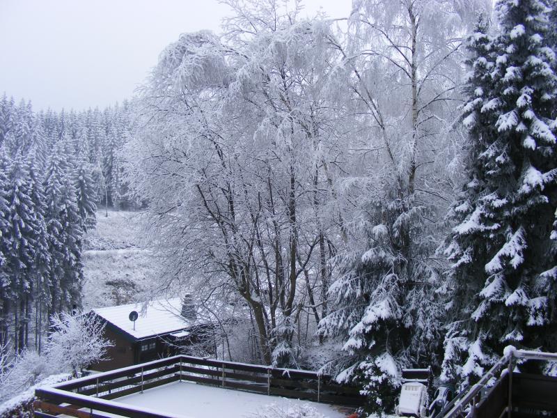 Invierno en Lauenstein