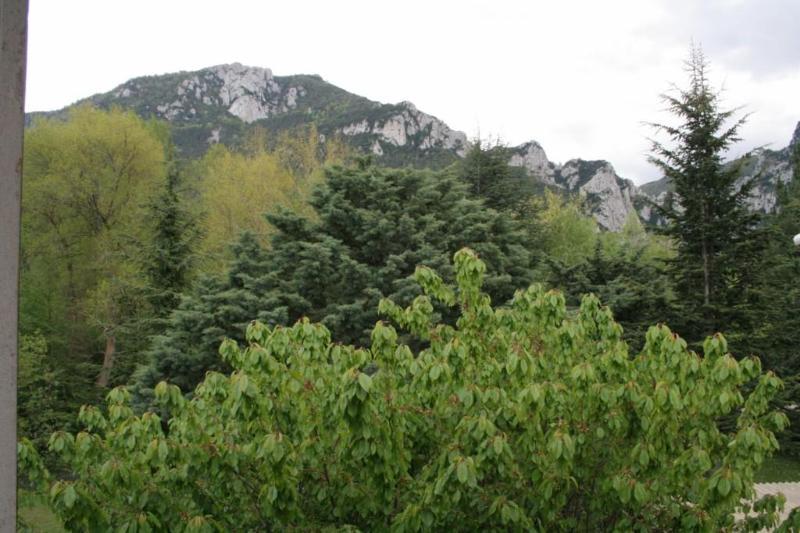 Bedroom View (of Pyrenees)