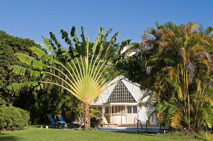 Een klein stukje paradijs in een acre van de tropische tuin