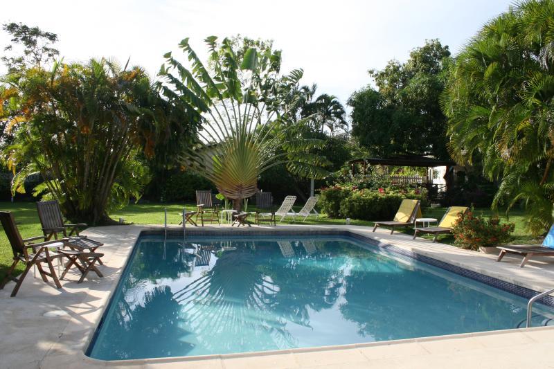 La piscina con Palm la magnifica del viaggiatore