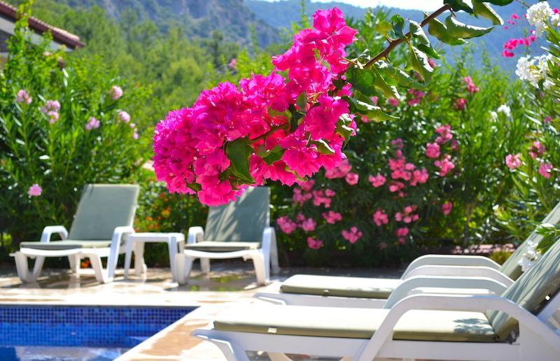 Villa Red Pine 5 Terrace Life Göcek, vacation rental in Gocek