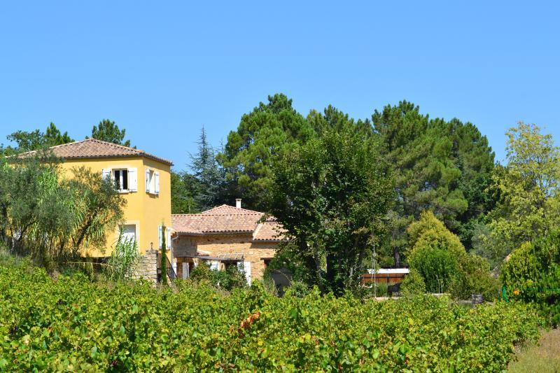 A Barua rodeada por oliveiras, pinheiros, árvores frutíferas e vinhas...