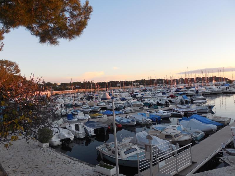 Opposite Port Gallice