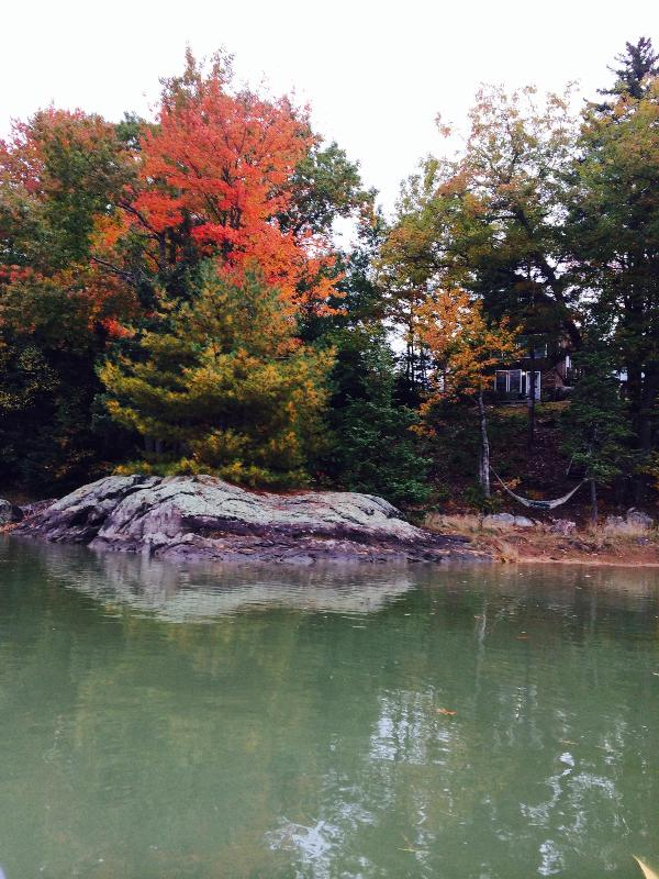 Fall colors looking back at the cottage from the tidal cove.