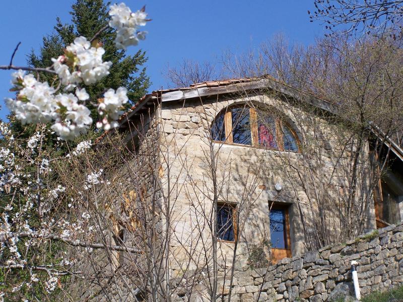 Ostfassade in die Feder, Cherry blossoms
